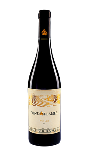 Vine in Flames Pinot Noir
